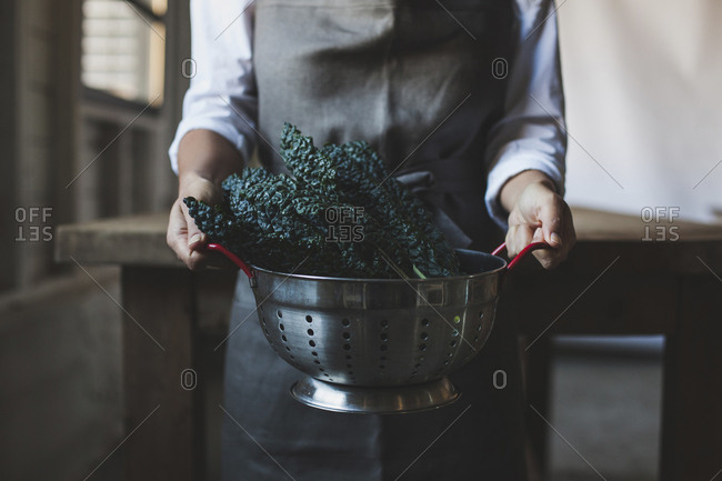 Midsection of woman holding kale in colander