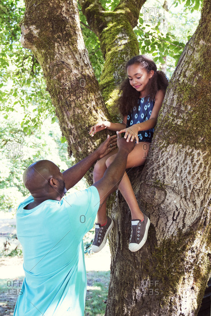 Father reaching for daughter sitting on tree trunk at park
