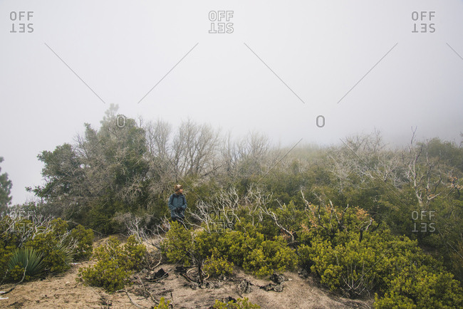 Man standing on field amidst trees against sky during foggy weather