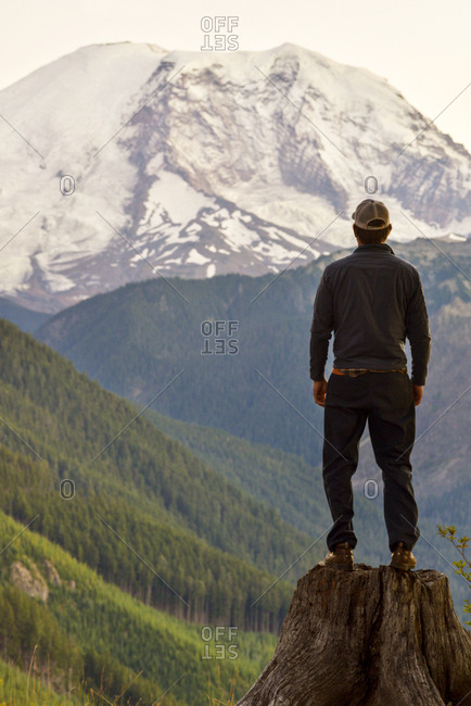 Rear view of man standing on tree stump against snowcapped mountain