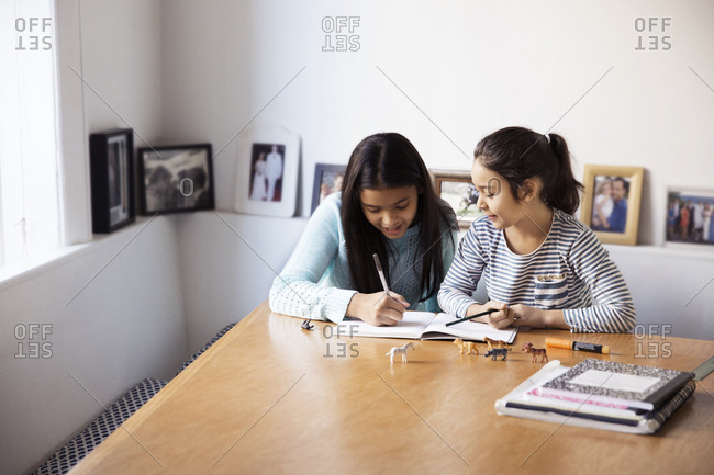 Sisters studying at table by window