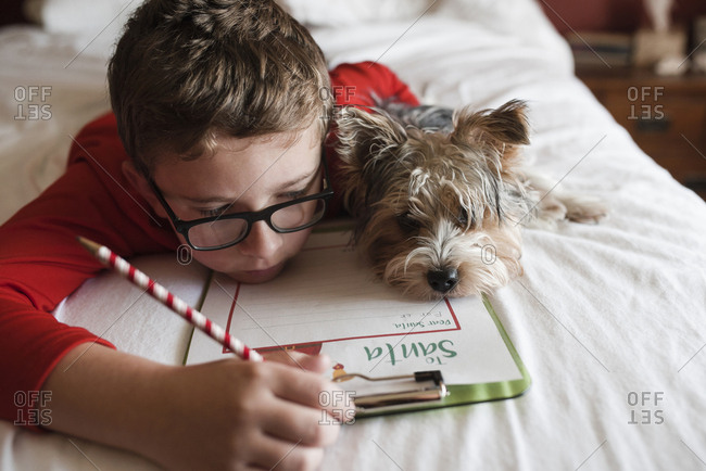 Close-up of boy writing letter while lying on bed with Yorkshire Terrier