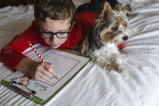 Boy writing on clipboard while lying on bed with Yorkshire Terrier