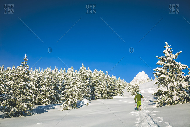 Rear view of man skiing on snow covered field against clear blue sky