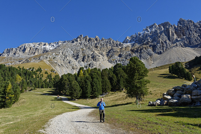 Italy- Alto Adige- Latemar- hiker on Latemar Natura trail
