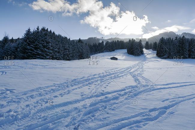 Germany- Nesselwang- winter landscape