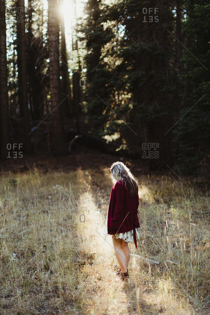 Pregnant woman wandering by forest, Sequoia national park, California, USA