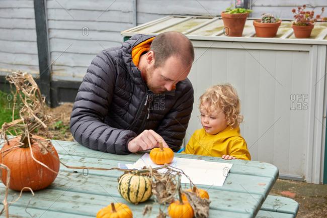 Mid adult man and toddler daughter looking at pumpkin at farm picnic table