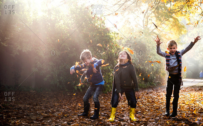 Three young boys, playing outdoors, throwing autumn leaves