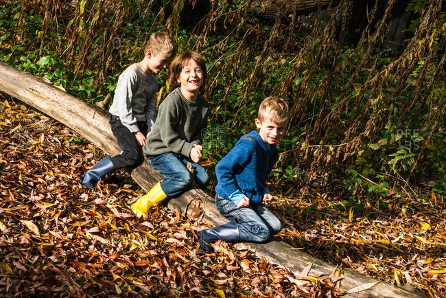 Three boys, outdoors, sitting on log, surrounded by autumn leaves