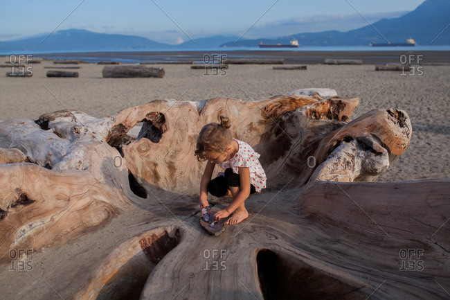 Little girl playing on wood sculpture on beach, Vancouver, British Columbia, Canada