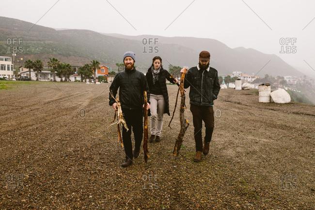 Three friends carrying driftwood on a beach