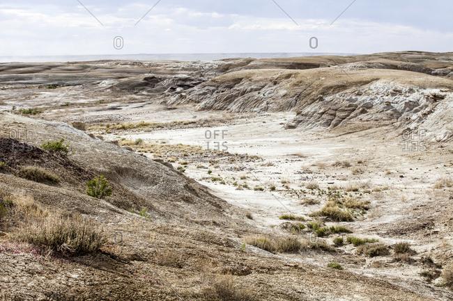 A remote desert landscape