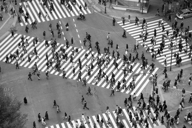 Tokyo, Japan - December 1, 2015: Shibuya crossing at intersection