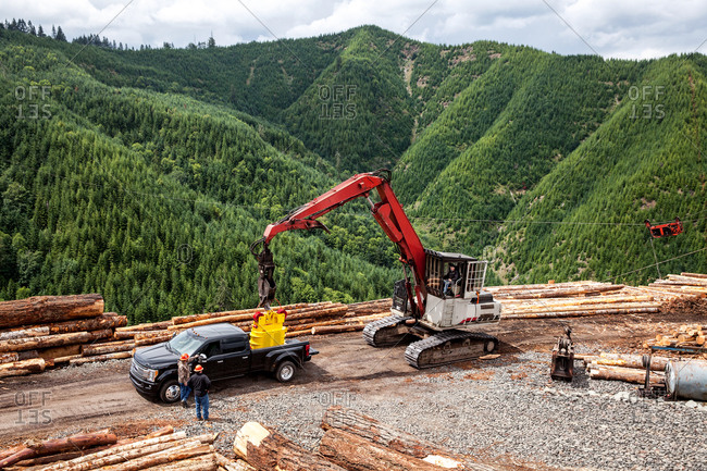 A logging worksite near forest
