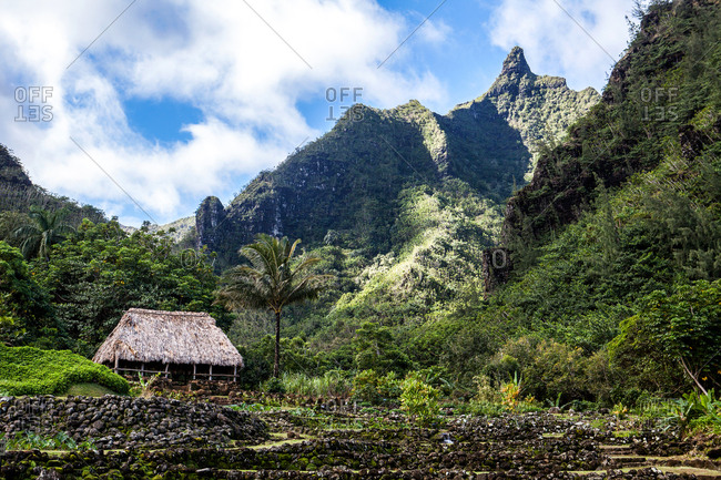 Hut in a jungle by mountains