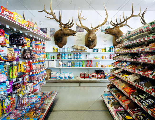 5/19/06: Elk heads in a convenience store
