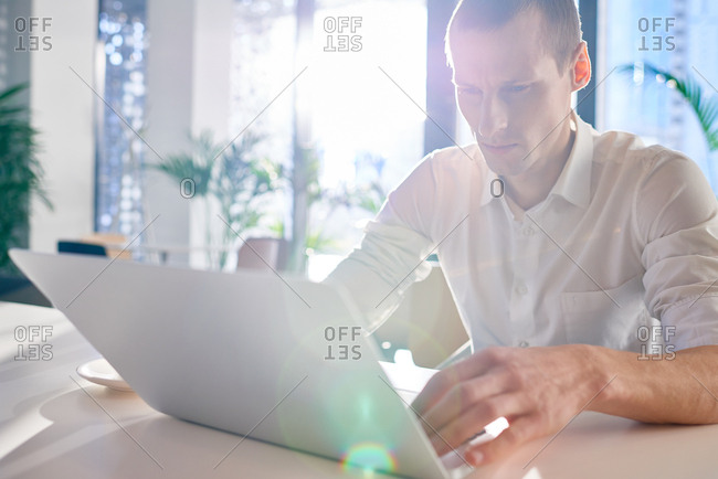 Concentrated young man in white shirt using laptop while sitting in modern cafe illuminated by bright sunlight