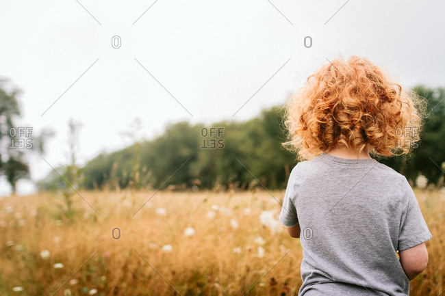 Little boy looking out over a field of tall grasses