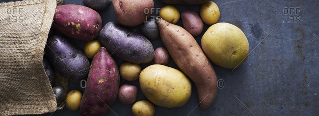 Variety of potatoes and a burlap sack