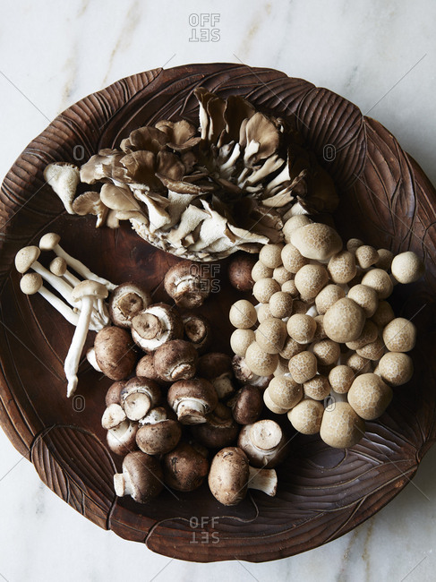 Variety of mushrooms in a wooden bowl