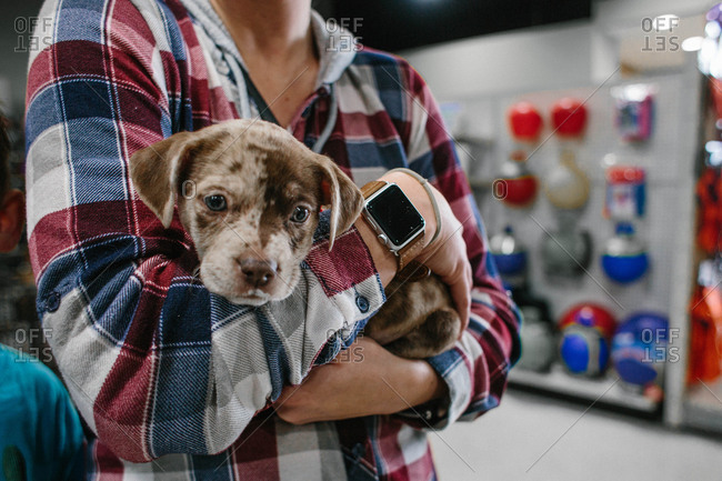 Woman holding a puppy in a store