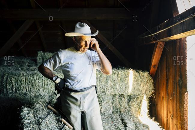 Caucasian farmer in barn talking on cell phone