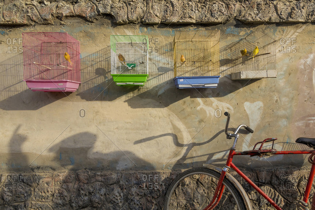 Bicycle leaning on wall under birdcages