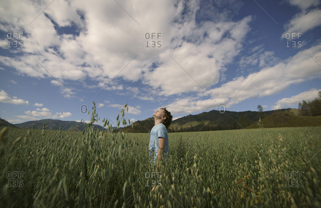 Caucasian boy standing in field looking up