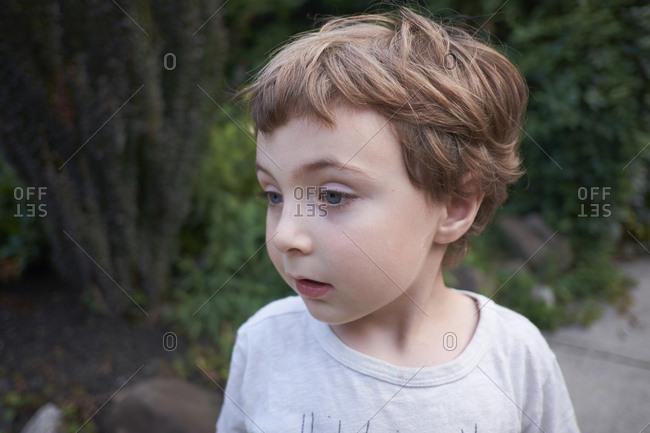 Close-up portrait of a cute, preschool-aged boy
