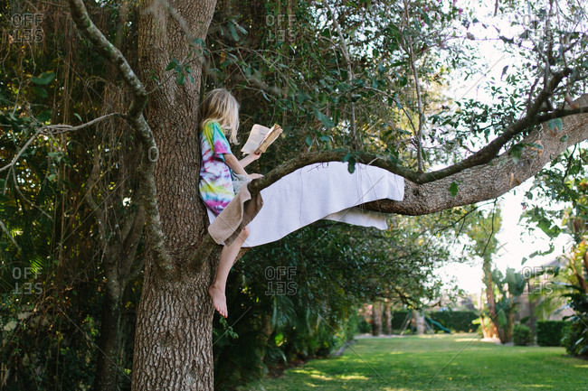 Girl reading a book in a tree
