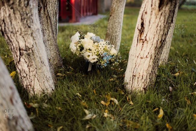 Bouquet in the grass between trees