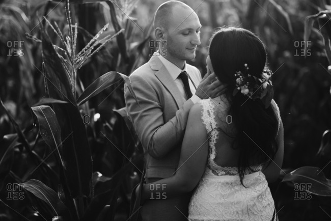 Black and white portrait of bride and groom in a cornfield
