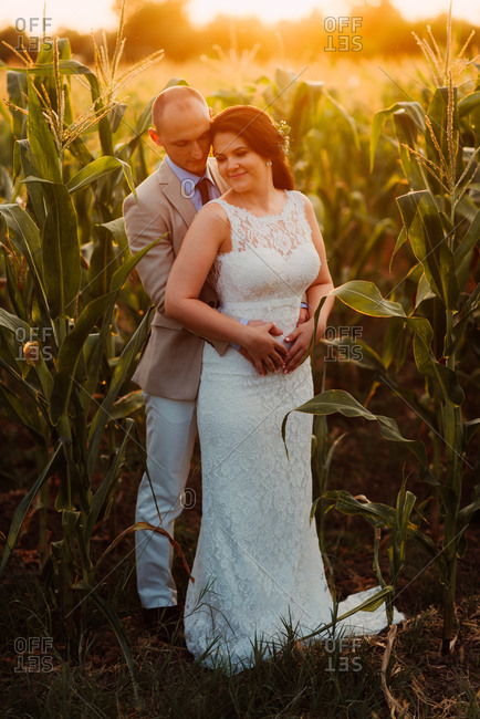 Bride and groom standing together in a cornfield