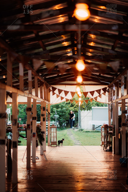 Cat walking on a covered porch at a wedding reception