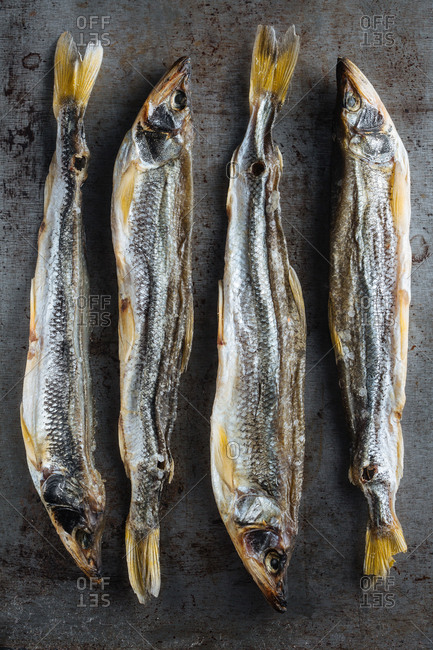 Four smoked whole fish on gray background