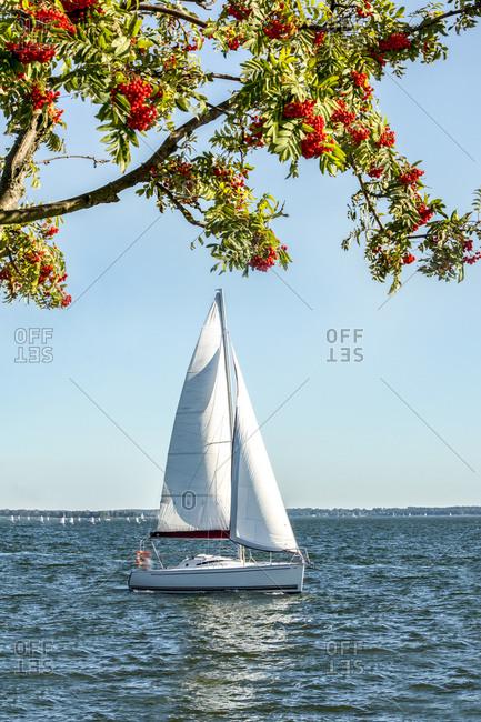 Poland- Masuria- Sailing boat on Lake Niegocin