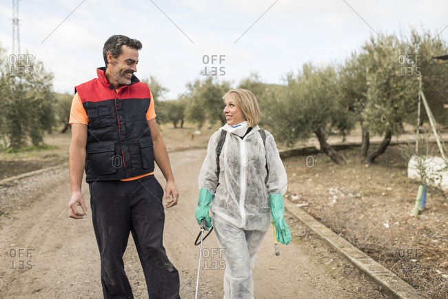 Couple working on farm- woman wearing protective overall to fumigate olive trees