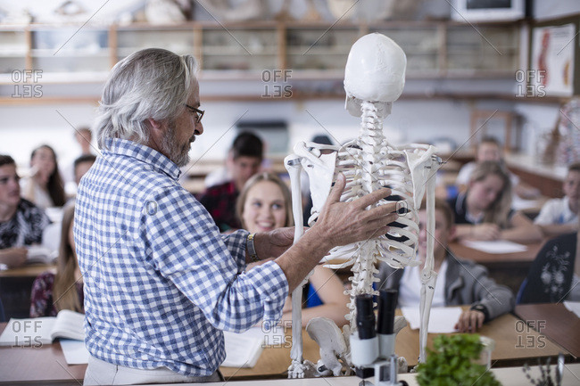 Teacher with anatomy model and students in class