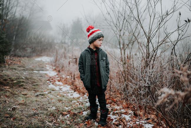 Boy looking towards foggy woods