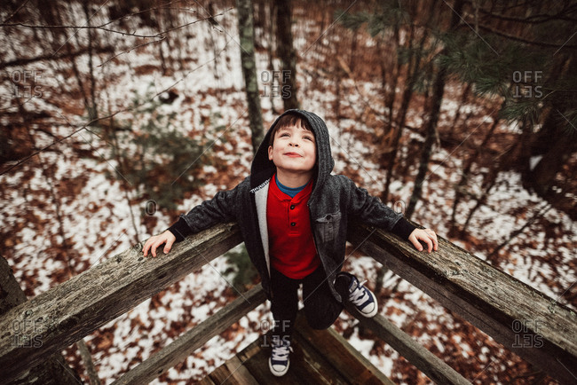 Boy looking up at tall pine trees