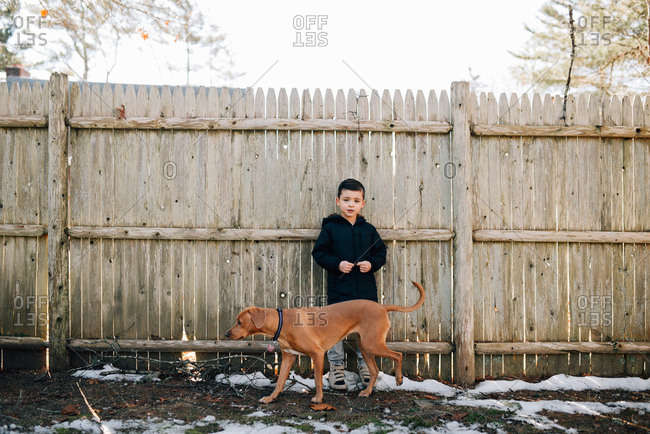Boy standing by wooden fence with dog
