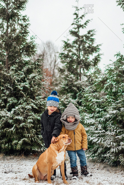 Brothers standing with dog in snow