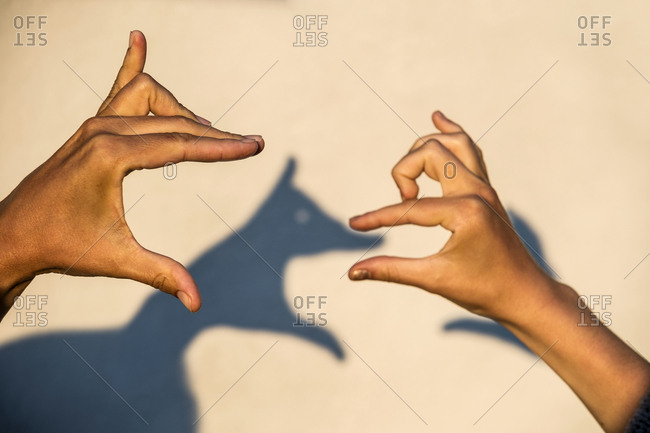Hands making shadows