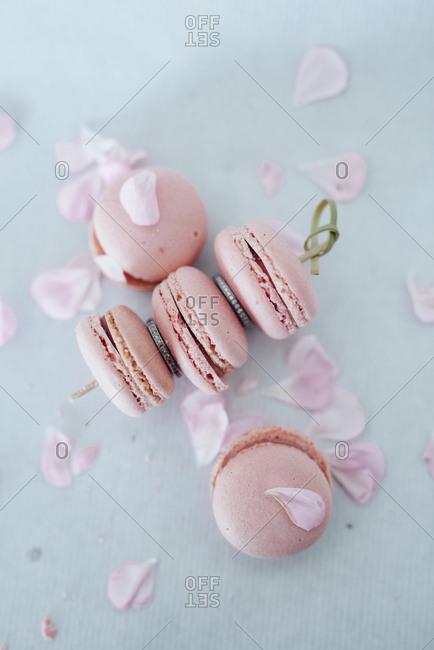 Pink macaroons and rose petals