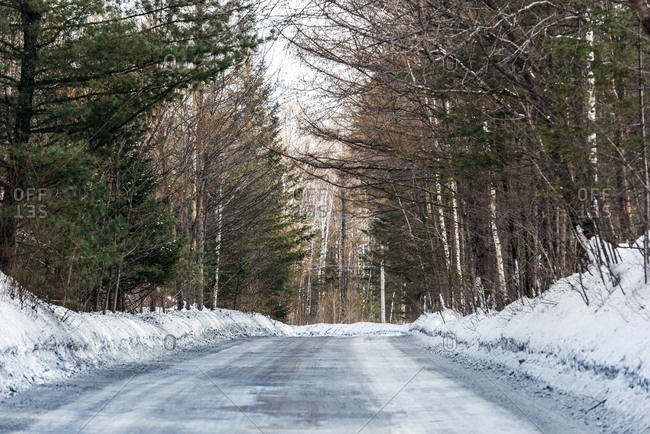 Road through forest in winter, Jilin, China