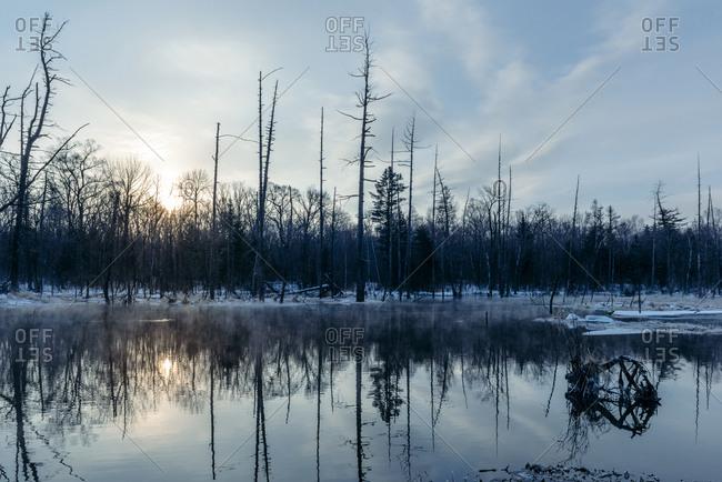 Steam rising from marsh in winter at dusk