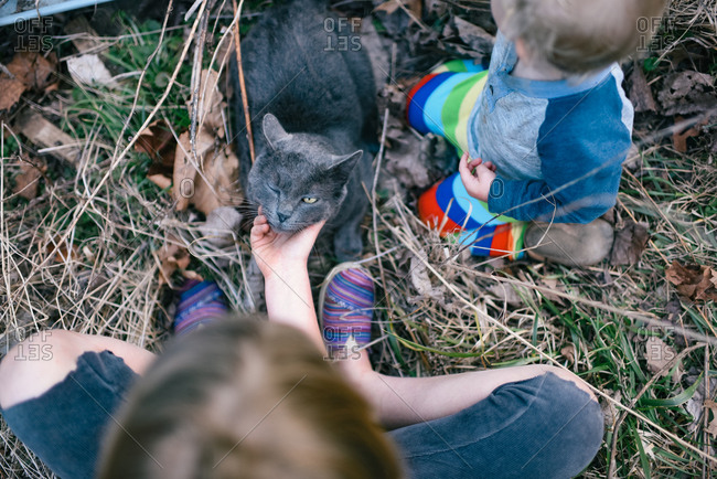 Children petting gray cat outdoors