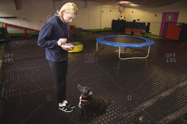 Woman feeding black beagle