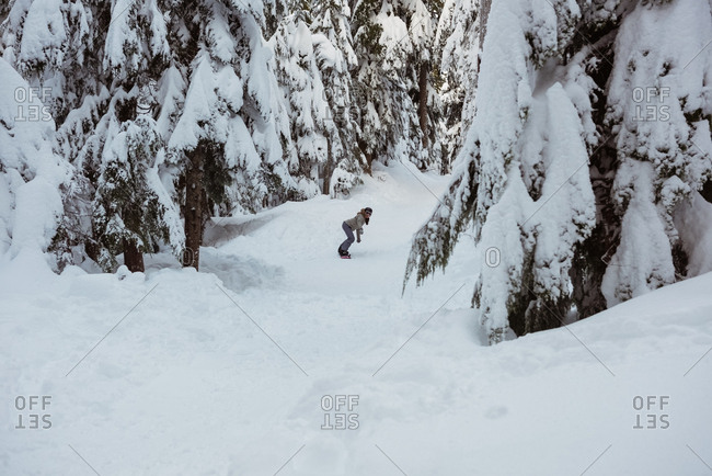 Woman snowboarding through snow covered pine trees